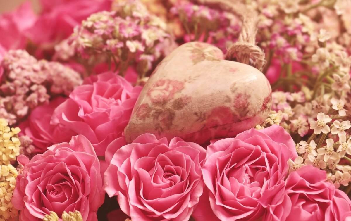roses-3699995_1920 (1)