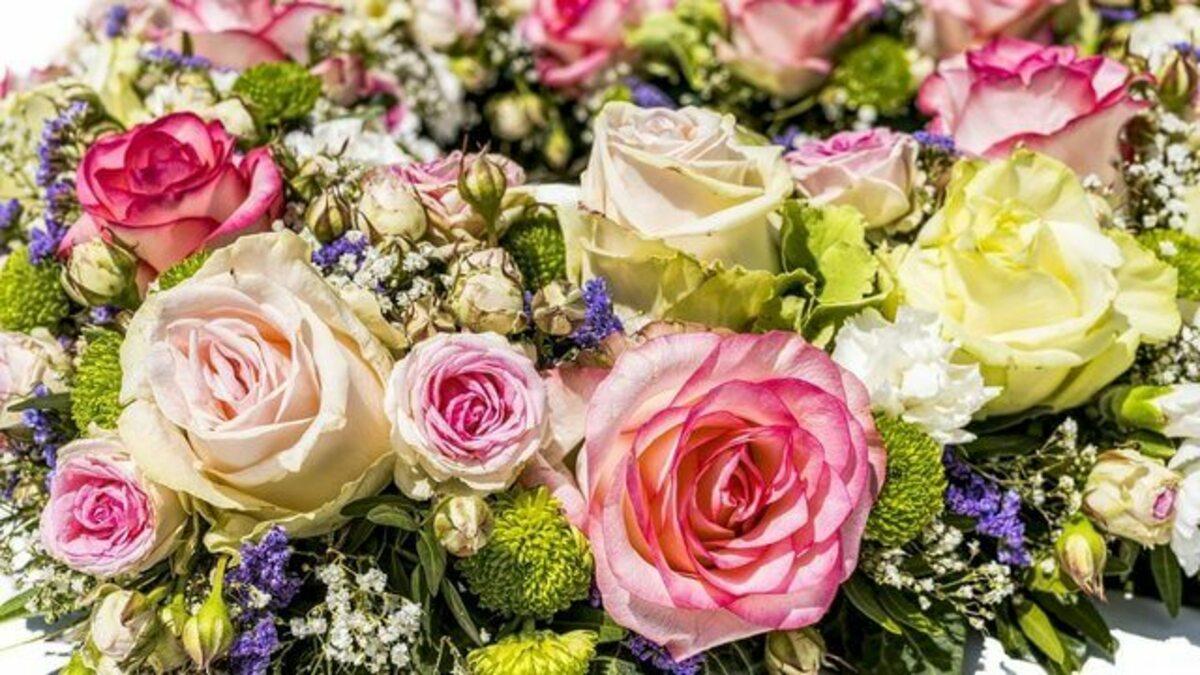flowers-3441662_1280