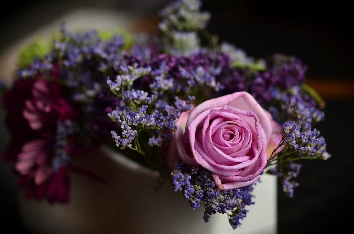 flowers-1405552_1280